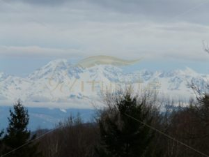 Snowy Pyrenees - Get It Write International