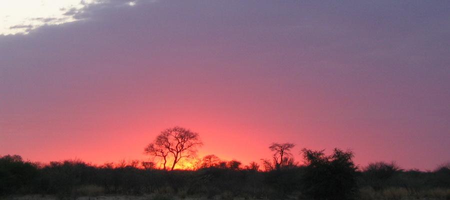 Botswana_sunrise-900x400
