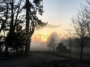 Misty path to dawn - Get IT Write International